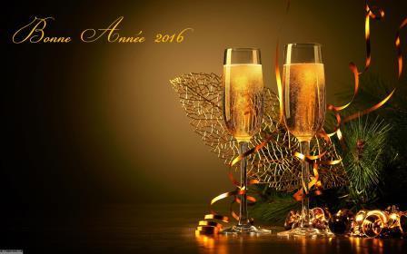 Une très bonne année 2016 à tous nos clients!